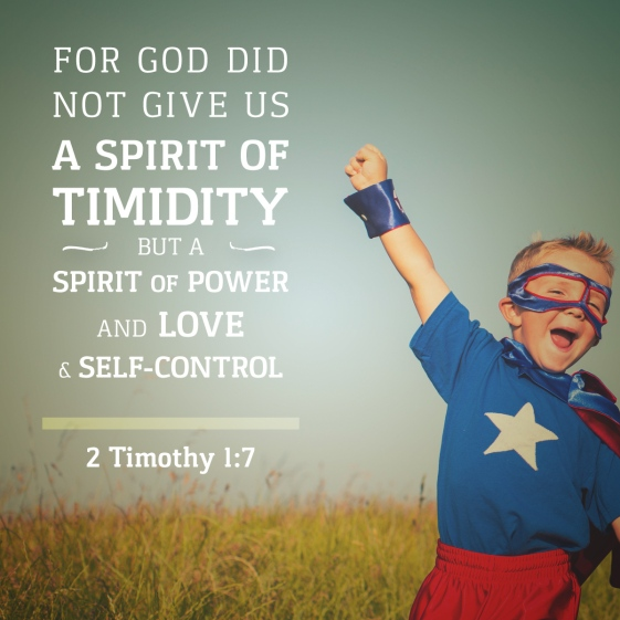 0910162Timothy17-none